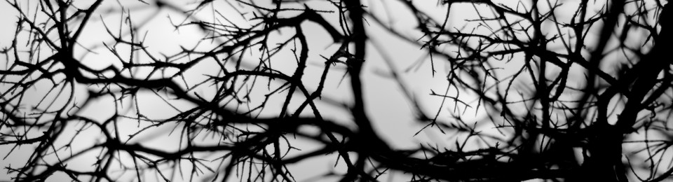 Valse Gothique