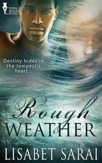 RoughWeatherCover200x320